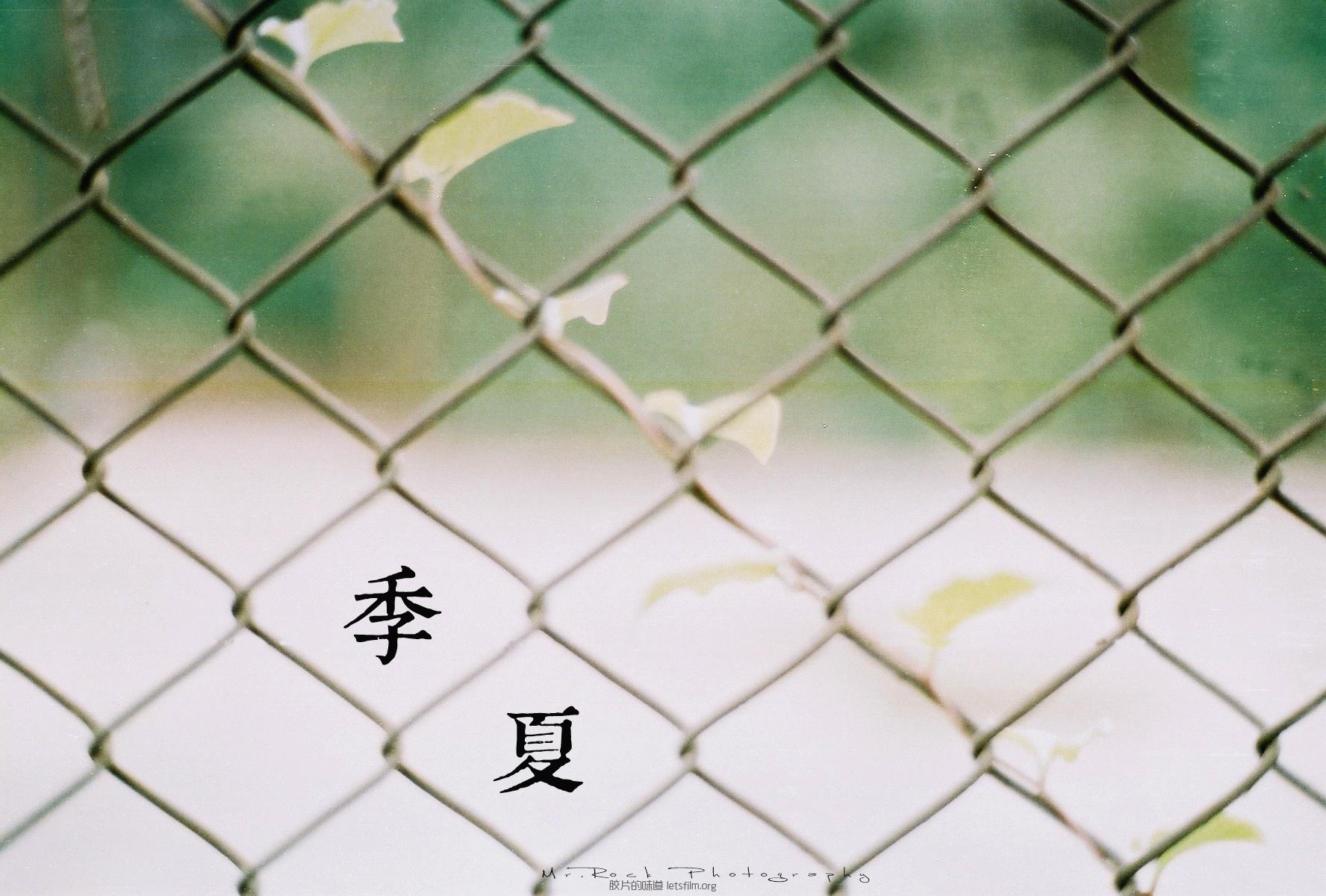 菲林日记·六月季夏 (7)