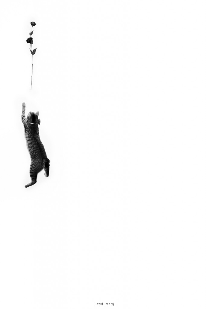 Sherry Huang的黑白作品