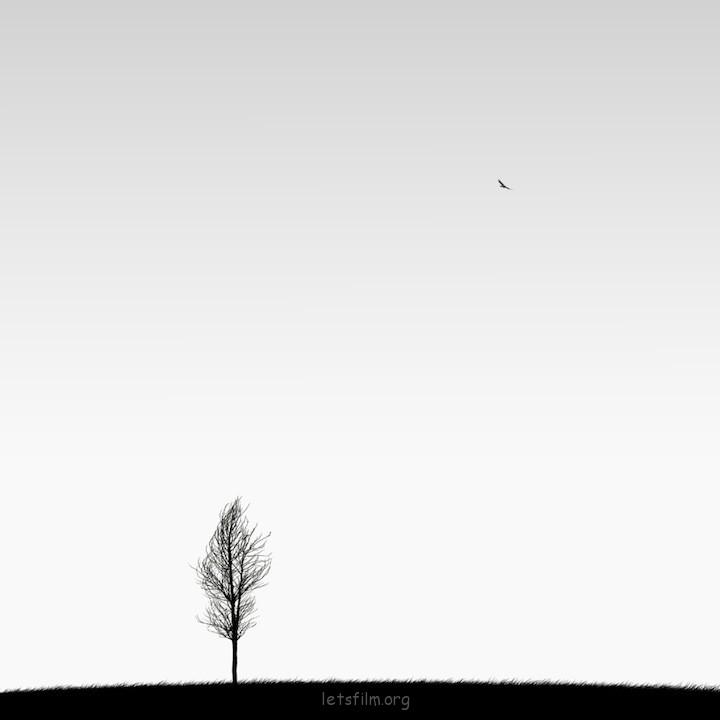 极简黑白摄影