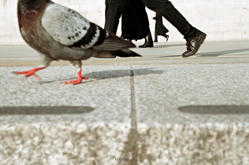 如何评论街头摄影作品