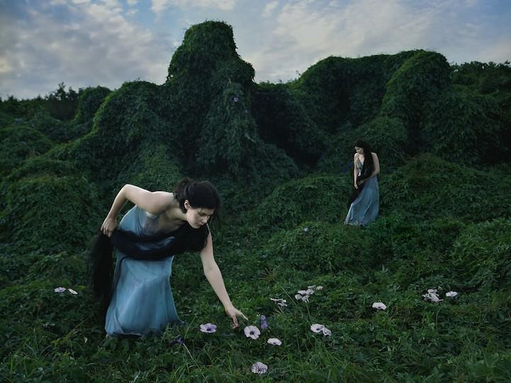 捕捉自然仪式中的细微之美