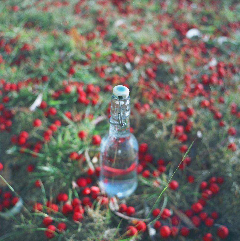Lusikka 瓶子的故事