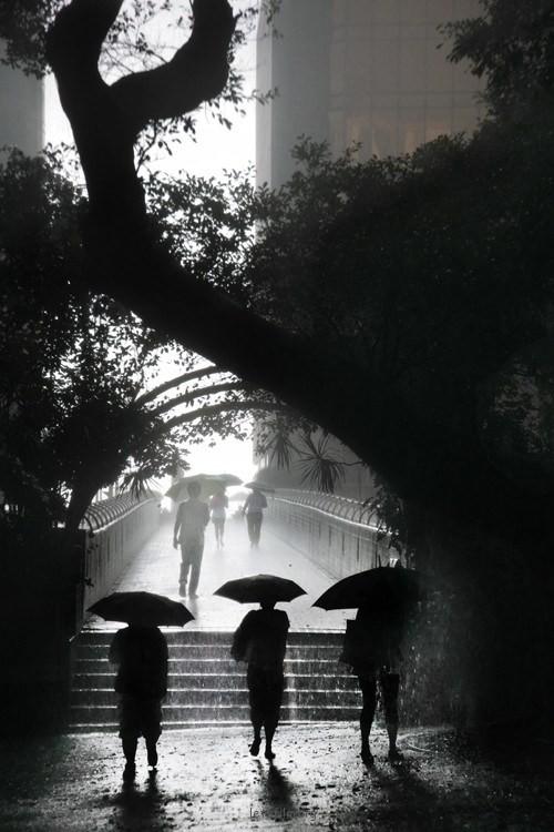 Rainy in HK