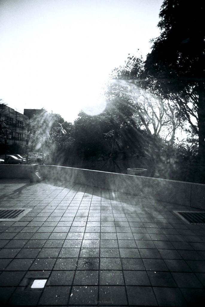 这城市日光太曲折