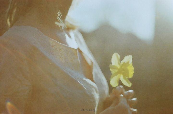 Nevara摄影作品
