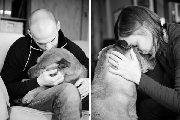 養過寵物的人會懂...寵物訣別前的最後歡樂時光攝影集12-600x399