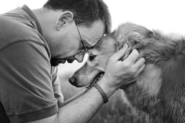 養過寵物的人會懂...寵物訣別前的最後歡樂時光攝影集3-600x399