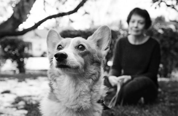 養過寵物的人會懂...寵物訣別前的最後歡樂時光攝影集8-600x390