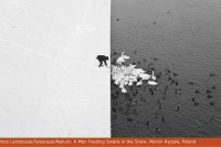 2013国际艺术摄影比赛优秀作品选