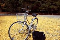 京都·單車漫遊