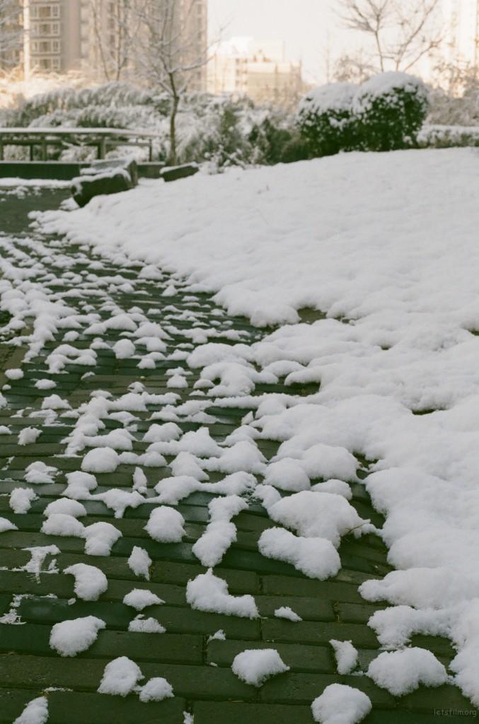 2012年雪