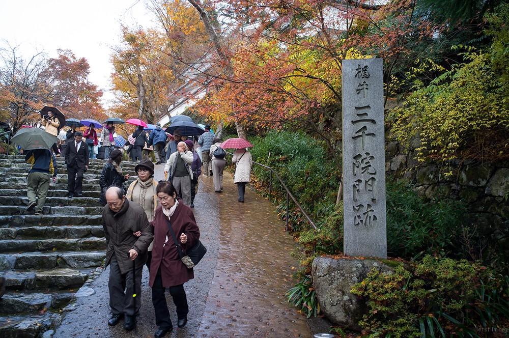 京都 三千院 RICOH GXR MOUNT A12 LEICA SUPER-ANGULON 21/4
