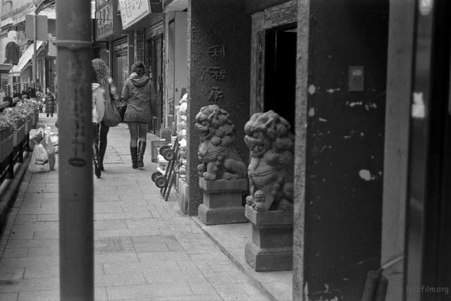Leica M2 / Summicron 50/2