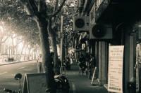 我城No.037 上海的夏天