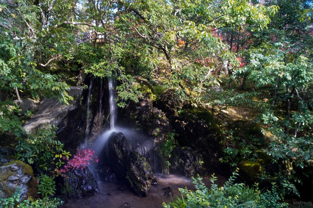 京都 金閤寺 RICOH GXR MOUNT A12 LEICA SUPER-ANGULON 21/4