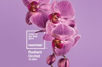 专属于你的独特色彩, The PANTONE Color of the Year 2014