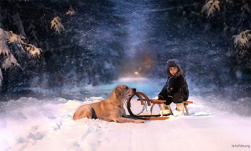 Elena Shumilova是一位妈妈,同时是一个农场主人,在她的镜头下,两个儿子与农场里的各种动物,于互动间呈现出极为漂亮的画面,光影色彩的和谐,小孩与动物的交流,构成一幅幅令人难忘的作品。 摄影师指出她是一个相当依赖直觉的人,通常使用的是自然光,例如阳光、街灯、烛光等等,感觉对了就会按快门。也许是她曾学习过绘画和素描等技巧,也造成了这种拍摄的美感。 大家可以欣赏以下作品,一位天赋过人的摄影师妈妈与她的亲子纪录。