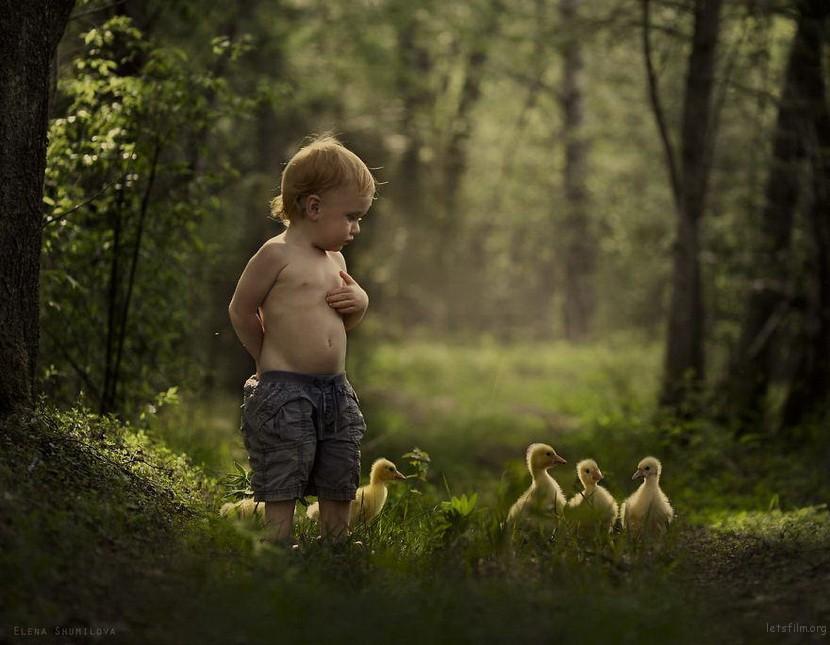 农场妈妈拍摄孩子与动物间的美丽互动
