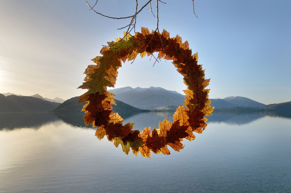 Autumn-Leaf-Cycle-