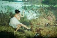 水下摄影和绘画的结合