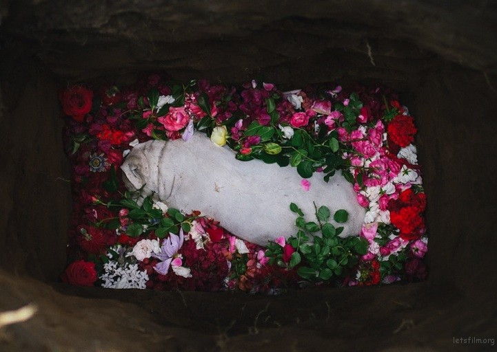 dogburial07