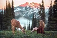 大自然中的宁静瞬间