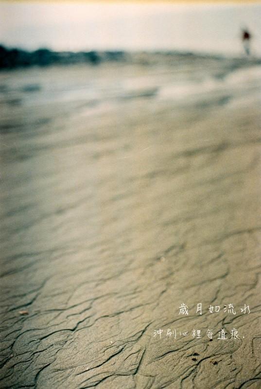 为一道风景,漂洋过海来看你(4)