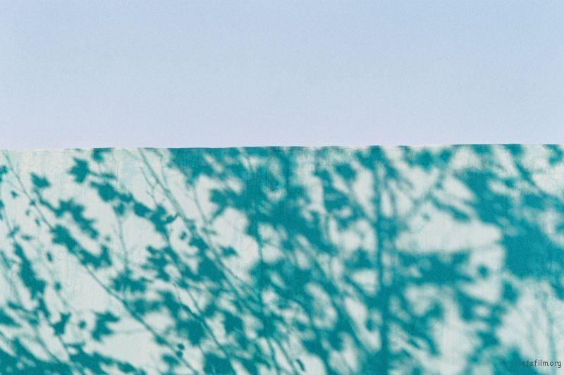 投稿作品No.1423 作为蓝色而存在 | 胶片的味道