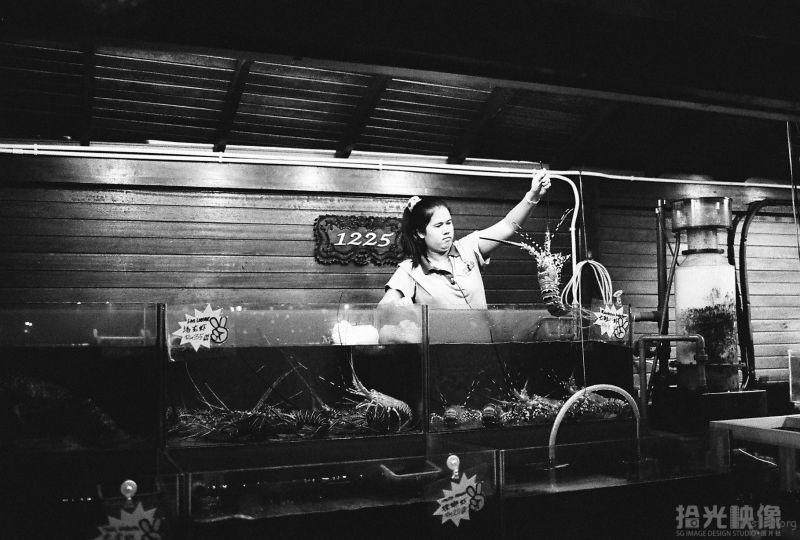 兰卡威珍南海滩夜市-海鲜店No.1