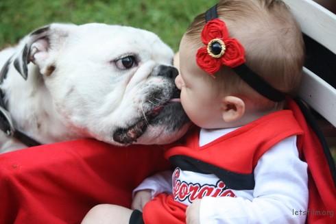 「在宝宝即将来临时大家都要我们赶走Munson 我们的斗牛犬,认为他会攻击孩子,但现在小孩3个月大了,从宝宝进家门第一刻Munson 就爱着他,甚至分享他的娃娃,那只他从来不给我们碰的娃娃。」