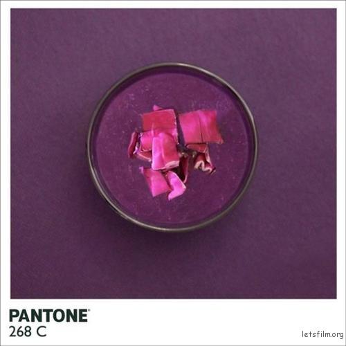 pantone-food5