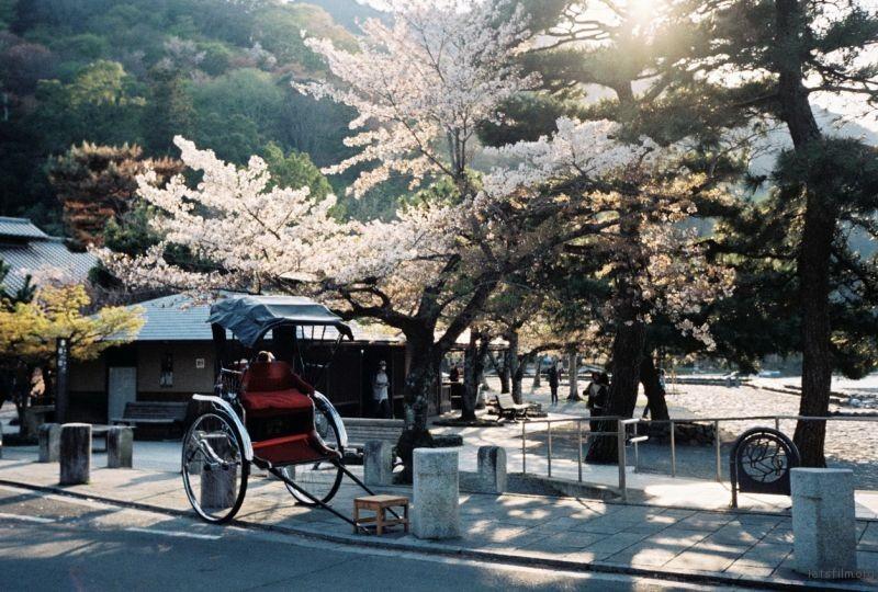 摄于2014年4月,日本京都,岚山渡月桥