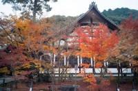 京都·銀閣、永觀堂