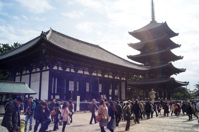 奈良 興福寺  RICOH GXR MOUNT A12 LEICA SUPER-ANGULON 21/4