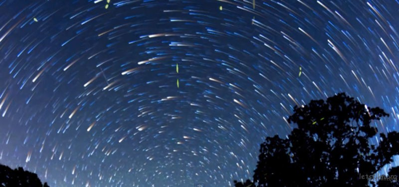 Timelapse-Scenes-of-Swarming-Fireflies-9-640x300