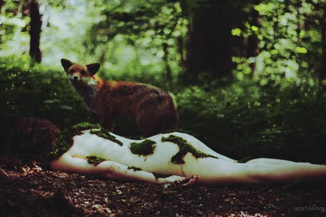 fairy_tale_ii_by_mala_lesbia-d46jdzx