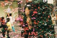 重曝 · 《花与爱》