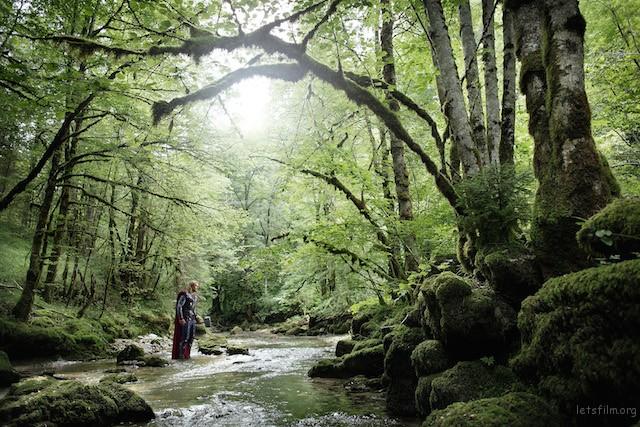 想必索尔正在享受森林中的芬多精~