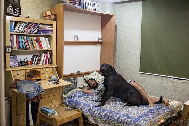 在伊朗,狗只通常被认为是不洁而不会被当作宠物,就算养,都只会让它们留在屋外。