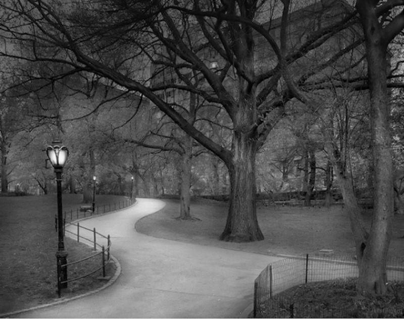 Michael-Massaia-Central-Park-at-Night-11-600x475