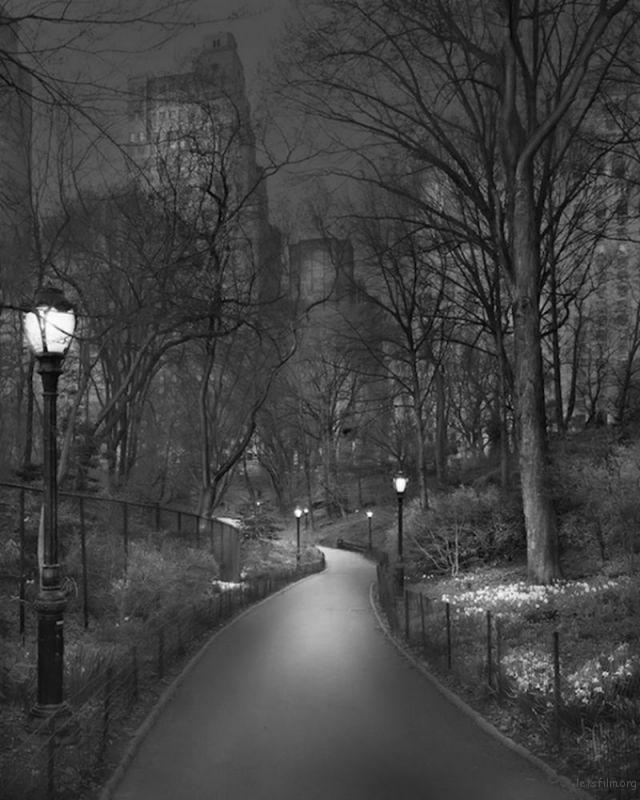 Michael-Massaia-Central-Park-at-Night-13-600x750