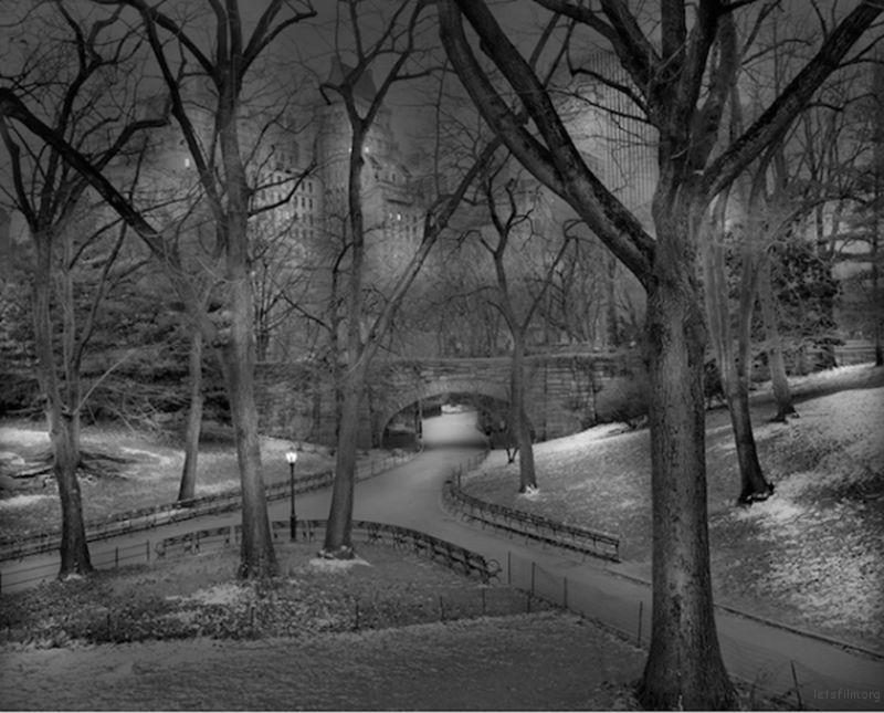 Michael-Massaia-Central-Park-at-Night-14-600x484