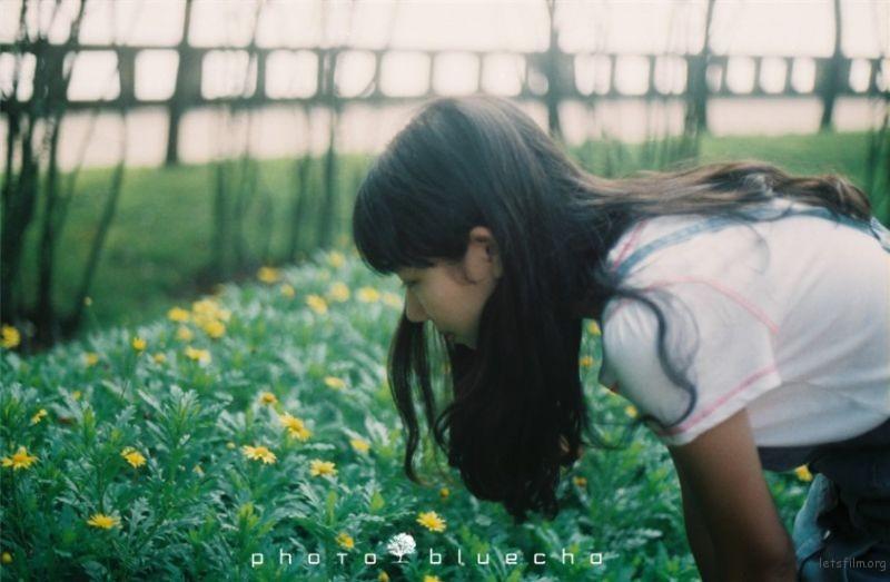 少女与夏天