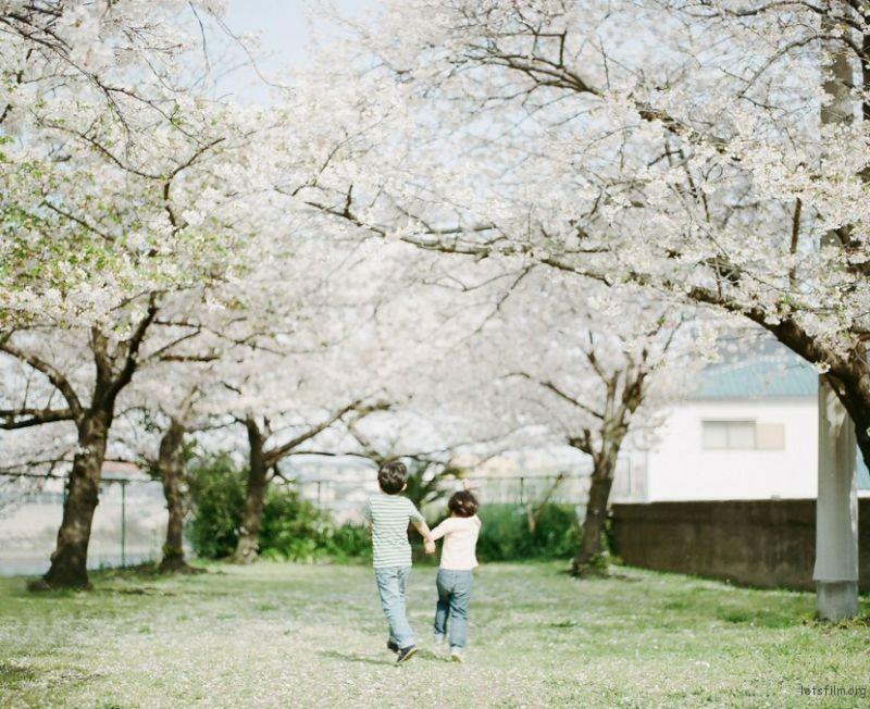 82acfb6617_Hideaki-Hamada-15-830x677