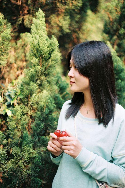 投稿作品No.2591 薄荷西红柿   胶片的味道