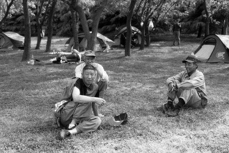 草坪上休息的工人