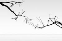 寂静的平衡与美,黑白极简抽象摄影