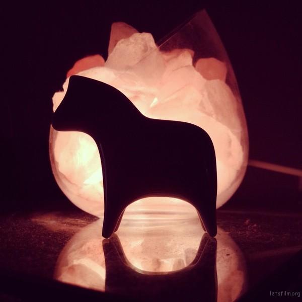 小马,逆光,作者:叶飞 / Y.Phoenix