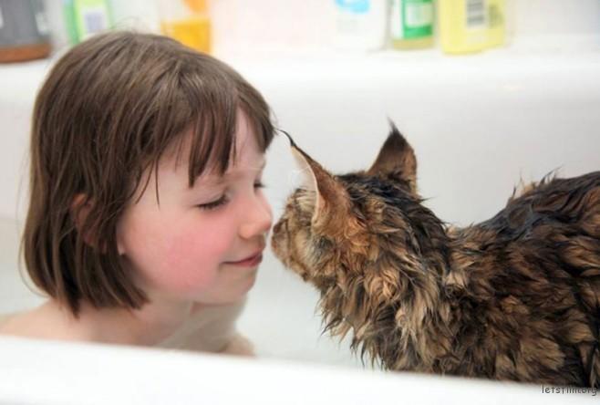 thula-therapy-cat-autistic-artist-iris-grace-14-830x561-658x444