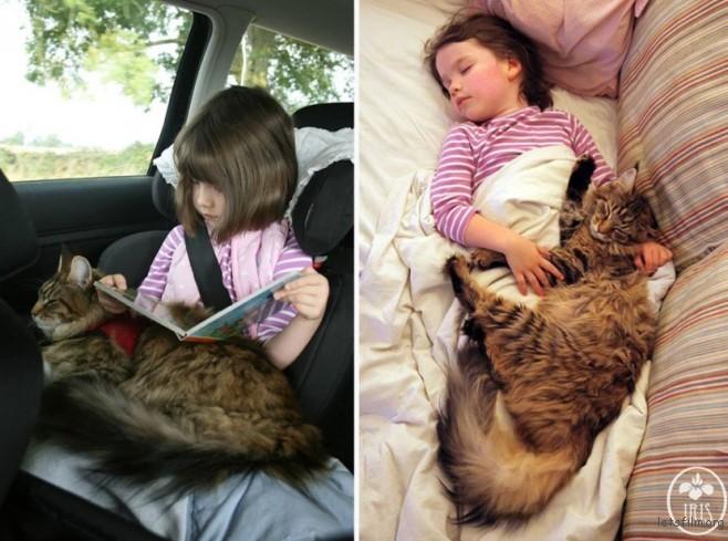thula-therapy-cat-autistic-artist-iris-grace-15-830x618-658x489